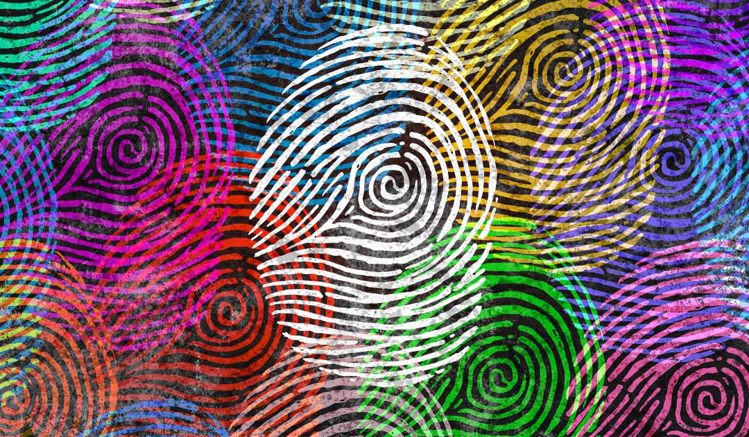 Dossiê da Identidade e Autoconhecimento